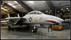 Grumman F-14A Tomcat (LOMO56) Tags: flugzeuge kampfflugzeuge kampfjets modernekampfjets modernekampfflugzeuge grummanf14atomcat f14a f14atomcat historischekampfjets