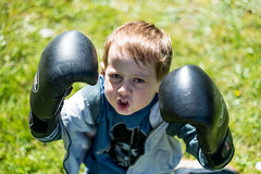 The Boxer - DSCF2017 (s0ulsurfing) Tags: s0ulsurfing 2017 march isle wight william boxer boxing garden boy play imagination fuji xseries xt2