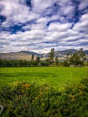 Countryside near Cajamarca, Peru.