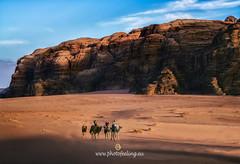 Jordania sunset in Wadi Rum DSC6678 (joana dueñas) Tags: desert reddesert jordan joanadueñas photofeeling landscape sunset rocks clouds colors camels outdoor spring wadirum