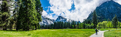 Yosemite Valley Meadow Panorama (randyherring) Tags: recreational nationalparksystem historic park yosemitenationalpark ca mountains beauty outdoor vacation tourism california nature yosemitevalley unitedstates us