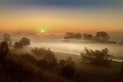 Fogsunrise (karstenlützen) Tags: germany brandenburg oderbruch border poland fog sunrise landscape sigma1020f35 sonyalpha