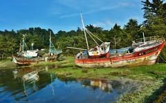 ~~ La retraite des vieux bateaux...~~ (Joélisa) Tags: épaves vieuxbateaux reflets ancien rouille mai2017 bretagne
