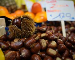 castagna (RaffaLUCE) Tags: chestnut castagna cibo ingredients italy italianmarket fresh fujixt1 foodphotography