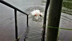 bugasee kassel (marcostetter) Tags: wetclothing wet wetjeans barefoot lake landscape