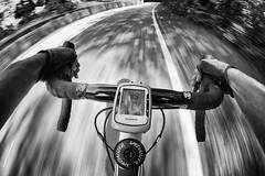 Pedala l'hai voluta tu la bicicletta, pedala più in fretta, pedala più in fretta. (Frankie hi-nrg mc) (fil.nove) Tags: canon60d actionphoto actionsport speed velocità samyang8mm samyang fisheye8mm pov pointofview puntodivista bicidacorsa roadracebicycle bicycle specialized spexializedroubex manubrio handlebar garmin panoramicadeicollitorino strada street biancoenero blackandwhite motionblur motion actionphotography sportphoto movimento movement torino turin italia italy piemonte blur sfocato photoshop bikebyshooting collinaditorino fisheye bikersview