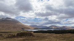 Loch Tulla, Central Highlands, Argyll and Bute, Scotland (dorrisd/ will catch up on comments) Tags: a82 argyllandbute blackmountrange british centralhighlands clachleathad europe europeancountry greatbritain meallabhuiridh mienekeandewegvanrijn scotland scottish scottishscenery unitedkingdom atlochtulla beautyinnature breathtakingpanorama cloudyskies countryside fells fence fromlochtullaviewpoint hiily imposinglandscape island lakeview mountainous mountains nopeople observatoinpoint outdoors panoramicview panoramicvista photography remoteness ruggedlandscape scenery scenic sightsee sightseeing sightseeingspot snowcovered stockphoto touristattraction travelandtourism traveldestination travels vista verenigdkoninkrijk gb