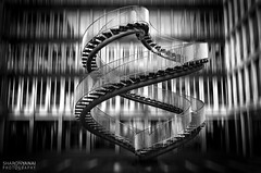 Infinite Stairs (SharonYanai.com) Tags: gemany ארכיטקטורה sharonyanai photography architecture גרמניה munich מינכן שרוןינאי noir black white שחור לבן