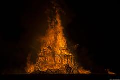 (Rob Millenaar) Tags: southafrica karoo tankwa afrikaburn fire yggdrasil treeoflife