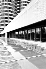 Cut into pieces (mimo b. rokket) Tags: abstrakt abstract abstraktearchitektur abstractarchitecture modern modernearchitektur modernarchitecture architektur architecture bw sw blackandwhite schwarzweis monochrome monochrom linien lines geometrie geometry münchen munich germany deutschland diagonale bmw bmwhochhaus bmwvierzylinder bmwturm karlschwanzer fenster windows spiegelung reflection