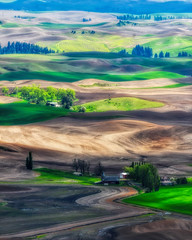 The American Tuscany (Jeff Clow) Tags: 2017 jeffclowphototours may mothernature thepalouse usa washington beautyinnature offthebeatenpath offthegrid outdoors travel