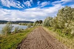 Auenlandschaft Hohenrode-August (13)
