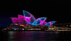 Opera House Audio Creatures (Rambo2100) Tags: sydney sydneyharbour sydneyoperahouse spinifex ashbolland rambo2100 vivid 2017 visual animation installation light projection circularquay night water
