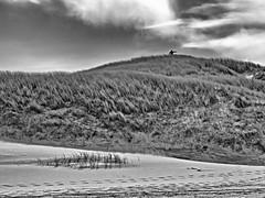 Da lang! (dolorix) Tags: dolorix holland düne dune nordsee northsea wegweiser guide