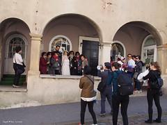 wedding chrashers001