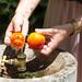 Obst waschen in Brunnen