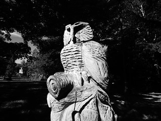 Owl Carving Sculpture Outdoors No People Night Statue Tree Sky Nature Close-up Photography Popular Photos Animal Head