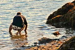 El buscador de almejas (Franco D´Albao) Tags: francodalbao dalbao nikond60 almejas clambs pescador fisherman ocaso sunset mar sea hombre man gente people vigo galicia