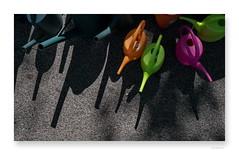 "ce jeu des garçons • <a style=""font-size:0.8em;"" href=""http://www.flickr.com/photos/88042144@N05/35051988202/"" target=""_blank"">View on Flickr</a>"