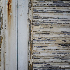 Paint goes a long way in making old look like new (Peter Jaspers (on/off)) Tags: frompeterj© 2017 olympus omd em10 zuiko 1240mm28 wood shutter texture square 500x500 maupertussurmer normandie normandy cotentin manche decay pourriture obturateur minimalism rust rusty