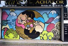 Mil'or (HBA_JIJO) Tags: streetart urban graffiti vitry vitrysurseine art france hbajijo painting peinture paris94 spray rideau store lalasaïdko steel