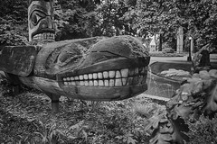 Showing Teeth Again (zenseas) Tags: totem totempole bw blackandwhite monochrome teeth tooth whale orca killer whaleindigenousnative americanindianburke museum seattle washington universityofwashington