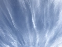 June 15, 2017 at 06:05PM (Mr T UK) Tags: ios photos cloud clouds sky outdoor blue white grey dark light sun sunshine cloudy clear overcast iphoneography mobile 365days 365day project365 cloud365