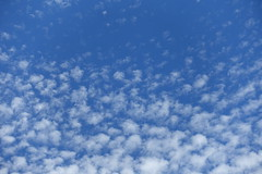 Sky @ Square Nicole de Hauteclocque @ Paris (*_*) Tags: paris france europe city june 2017 printemps spring sunny hot sunday squarenicoledehauteclocque park paris15 75015 clouds sky blue