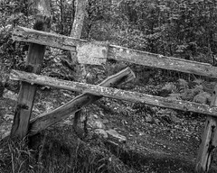 fence (Jonathan Carr) Tags: black white monochrome bw rural northeast landscape 4x5 5x4 toyo45a
