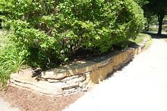 DSC02448 (David H. Thompson) Tags: madisonwi southowendrive simulatedrockoutcrop natural wall limestone blocks