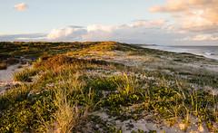 Magenta Shores Beach Sunset (laurie.g.w) Tags: magentashores beach sunset winters evening nsw centralcoast northentrance ocean sand waves water australia eosm seascape shoreline