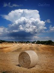 Nuvols d'estiu (oscar fotograf) Tags: nuvols cel cassa gavarres