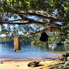 Always know where your towel is. Refuge Bay, Pittwater.