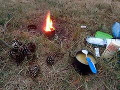 Photo of Le cuisine � lapomme de pin, et du rabe facon feu de camp