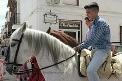 Día de san Isidro.Romería en Alameda(Málaga) (lameato feliz) Tags: alameda fiesta caballo jinete romería