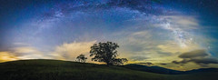 Below the Milky Way at the Blue Ridge Mountains (Robert Loe) Tags: milkyway glow light galaxy explored inexplore image photo photograph flickr tree blueridgeparkway blueridgemountains cows milk nature landscape dramaticsky dynamic clouds cloudscape mountains majestic awe nightskystars