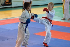 "pervenstvo-asbestovskogo-gorodskogo-okruga-po-karate-2017-4 • <a style=""font-size:0.8em;"" href=""http://www.flickr.com/photos/146591305@N08/34160867134/"" target=""_blank"">View on Flickr</a>"