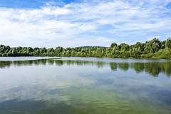 Auenlandschaft Hohenrode-August (9)