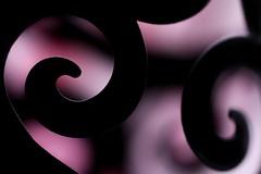 Silhouette (haberlea) Tags: garden hmm macromondays macro pink black metal candleholder silhouette outline