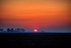 Sunset (Ray Cunningham) Tags: sunset ogden illinois hdr black soil fog 61859