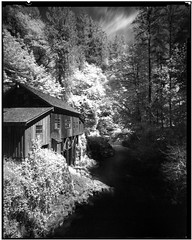Grist Mill 170520 (jimhairphoto) Tags: gristmill washington america nw northwest leftcoast oregon remainsoftheday naturalworld 4x5project crown graphic homemade wideangle fixedfocus camera 4x5 film rollei ir infrared blackandwhite blancetnoir schwarzeaufweis blancoynegro blancinegre siyahrebeyaz jimhairphoto
