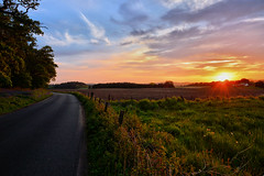 rural sunset (andrewmckie) Tags: kinclaven sunset scotland road rural sky scenery outdoors