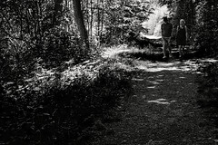 Quality leisure time (Mr.White@66) Tags: shadows lightandshade fujifilm fujifilmx100f netherlands holland blackandwhite biancoenero noiretblanc schwarzweiss bw people couple trees path woods woodlands plants