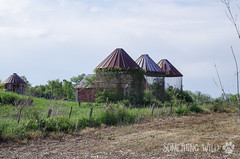 Abandoned Farm (Something Wild Photography) Tags: abandoned farm farmer farms farming old barn barns barnwood silo silos corncrib country rural landscape dilapidated decay decayed decaying rust rusty rustic field cornfield