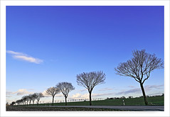 Haarstrang im Februar 2017 (Rolf Pahnhenrich) Tags: landschaft haarstrang rolfpahnhenrich winter landstrase bäume wolken himmel blauerabendhimmel abendhimmel abend canoneosdigital