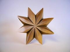 Waterlily - Meenakshi Mukerji (Rui.Roda) Tags: origami papiroflexia papierfalten flor fleur flower waterlily meenakshi mukerji