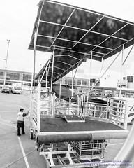 #IFlyAlaska & Appreciate the Classy Covered Ramp (AvgeekJoe) Tags: iflyalaska alaskaair alaskaairlines bw blackwhite blackandwhite d5300 dslr internationalairport ksea nikon nikond5300 seatac seatacinternational seatacinternationalairport seattle seattletacomainternational seattletacomainternationalairport skywestairlines washington washingtonstate airport ramp