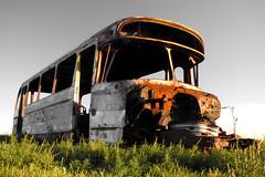 VIEJO, OXIDADO Y ABANDONADO...PERO FELIZ ALEJADO DEL MUNDO URBANO (kchocachorro) Tags: photography phothographer phothoart abandoned abandandonado old bus