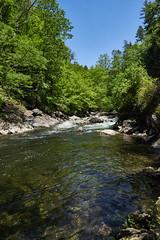 Smokey Mountain Stream (Mawddach Pictures) Tags: water green smokeymountains liquid tennessee sky