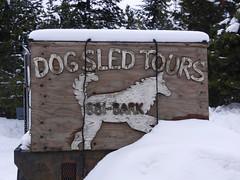 Truck for transporting dogs (lmundy2002) Tags: dogs dogsled dogsledding huskies sleds whitefish olney whitefishmt olneymt montana mt winter wintersports